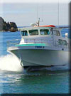 Click for more information on Anchor Charter Boats ~ Lady Irma.