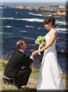 Click for more information on Weddings at the Mendocino Coast Botanical Gardens.