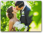 Click for more information on Brutocao Cellars Weddings.