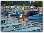 Click for more information on Dolphin Isle Marina & Deli.