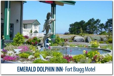 Emerald Dolphin Inn & Mini Golf