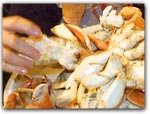 Click for more information on CRAB FEED!.