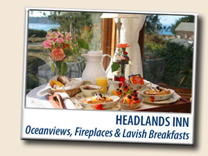 Headlands Inn