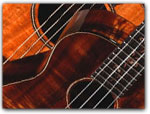 Click for more information on APR 29-30 | Ukulele Festival.