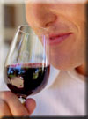 Click for more information on Wine Tasting 101.