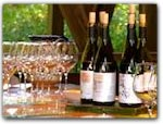 Click for more information on NOV 3 ~ Phillips Hill Tasting.