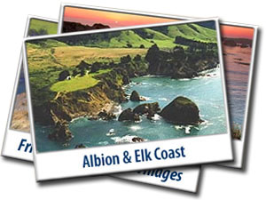 Postcards Albion Elk
