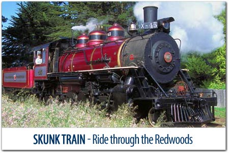 TRAVEL THROUGH TIME ON THE SKUNK TRAIN