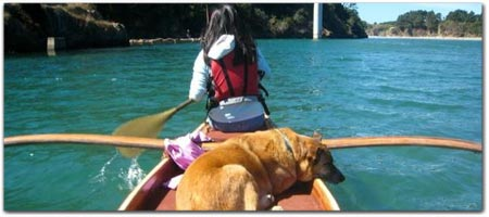 Catch a Canoe & Kayak Rentals