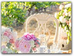 Click for more information on Weddings at Testa Vineyards.