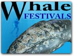 Click for more information on MENDOCINO WHALE FESTIVALS.