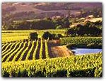 WINE COUNTRY BED & BREAKFASTS